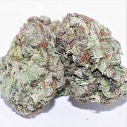 Purple Nerds (AAA-)