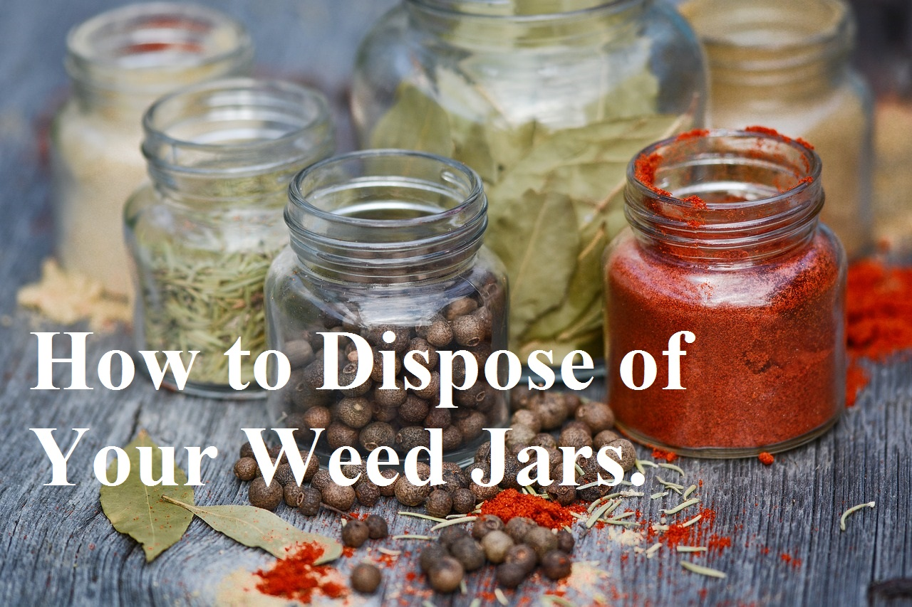 glass jars full of spices